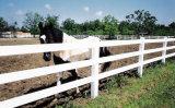 Rete fissa del PVC per il cavallo