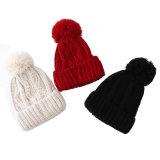 レディースメンズ男女兼用の球の帽子POM POMは編んだケーブルによってねじられた冬の暖かい帽子の厚い帽子(HW113)を