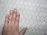 Draad 1/2 '' van het Gevogelte van het Netwerk van het Kippegaas van de Prik van Anping Hexagonale