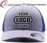 로고를 가진 작은 최소한도 순서 힙합 모자 Snapback 모자 필요조건