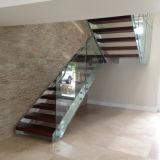 Escaleras rectas de interior/escala de paso de progresión de madera