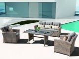 [رتّن] أثاث لازم حديقة فناء منزل فندق مكتب [مربلّا] ردهة أريكة خارجيّة يثبت ([ج558])
