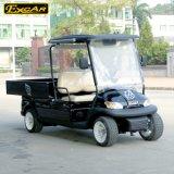カラー電気ゴルフ輸送のカートをカスタマイズしなさい
