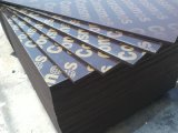 18mm Combi Core WBP pegamento Brown Film enfrenta la madera contrachapada