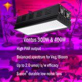Crescem melhor luz LED para o cultivo de plantas 2*300W