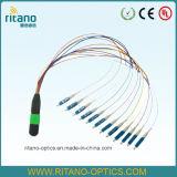 좋은 가격 3m 단일 모드 MPO/Mpt 광섬유 접속 코드
