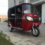 Driewieler Trike Met drie wielen de Met drie wielen van de Benzine van de motor voor Passagier