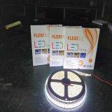 Hohes helles SMD5050 LED Farbband Stip heller Gleichstrom 12V