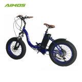 """20 """" إطار سمين [موونتيون] دراجة كهربائيّة يطوى [إبيك] لأنّ شاطئ وقت فراغ مع [48ف] [750و] ترس محاكية"""