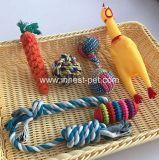 De Kabel van de Bal van het huisdier kauwt de Piepende Middelgrote Kleine Gift van het Speelgoed van de Hond