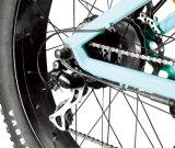 26X4.8インチの脂肪質のタイヤのPentagonalフレームが付いている2017新しいEバイク