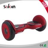 多彩な10インチのスクーター2の車輪のスマートな電気計量器のスクーター(SZE10H-2)
