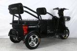 中国個人的な使用のための安く3つの車輪の電気三輪車