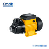 Pompe à eau agricole d'irrigation d'Omeik