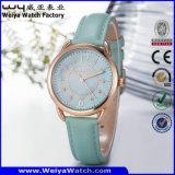 ODM-Hersteller-beiläufige Quarz-Dame-Armbanduhr (Wy-095D)