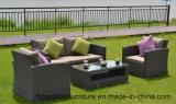 De nouveaux produits d'osier de style moderne de meubles en rotin canapé Set (TG-8095)