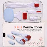Acciaio inossidabile di titanio del micro ago di terapia della pelle 540/192 di rullo 5 di Microneedling degli aghi in 1 rullo di Derma