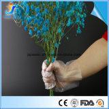 Wegwerf-HDPE/LDPE/CPE schützende PET Handschuhe für Nahrung