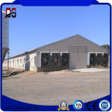 Prefabricated 집 강철 구조물 보일러 가금 농장 헛간
