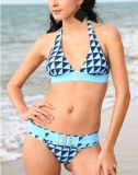 Lady's Bikini (YB-SW7020) (S-XL)