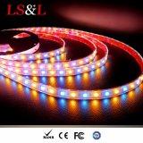 Color ambarino claro impermeable de Ledstriplight RGB que cambia luces de DIY