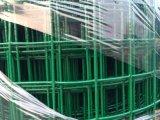 Euro rete fissa con il rivestimento del PVC