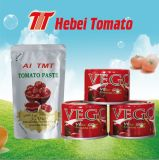 Pasta de tomate Salsa de tomate salsa de tomate