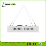 Shenzhen LED Lighting 300W-2000W double puce LED Light