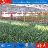 Tipo agricolo uso commerciale della serra
