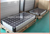 170W High Efficiency Poly Solar Panel