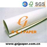 Livre Blanc pur de pâte de bois pour le retrait et la peinture