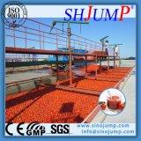 Planta de processamento de tomate de alta tecnologia