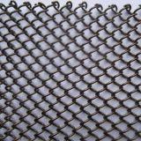 Rete metallica decorativa/rete metallica della costruzione
