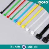 Serre-câble en nylon en plastique auto-bloqueur à haute résistance noir blanc de Strengh de la vente 2017 chaude