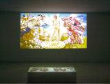 P7.62 de haute qualité Affichage LED colorés à l'intérieur du Conseil pour la publicité