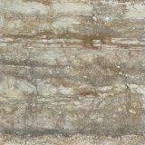Het Porselein van de Tegel van Pgvt verglaasde Verglaasde Tegel Qdpg26009