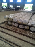 高品質(BS EN 10084)のDIN1.6526 20nicrmos2-2の鋼鉄