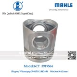 Mahle Piston 6CT para Cummins Engine 3929565