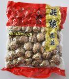 Fungo del fiore del tè secco commestibile che cresce in autunno
