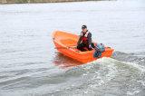 Populaire PE van de Vissersboot van de Verkoop Lichtgewicht 3.1m Kleine Plastic Boten