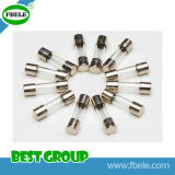 Maxi Auto Glass Tube Fuse1015