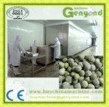 IQF Quick-Freezing Broad Bean Processing Plant