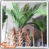 fuori albero d'argento della palma da datteri del portello per la decorazione della plaza