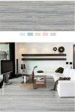 El producto de limpieza de discos modela el suelo de azulejos en venta