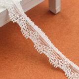 작은 형식에 의하여 뜨개질을 하는 백색 뻗기 레이스 목 손질