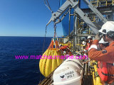 De Gewichten Waterbags van de Test van de Zak van het Water van de Lading van de Kraan van de kraanbalk