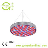 Kleine Energie 50W LED wachsen helles die UFO-volles Spektrum-Innenpflanzen, die Lampe wachsen