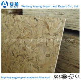 18mm High quality Waterproof Furniture of degrees of OSB