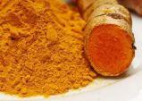 Polvere della curcuma di alta qualità per esportare
