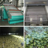 Industrielle Gemüse-u. Frucht-Heißluft-Nahrungsmittelriemen-trocknende Maschine